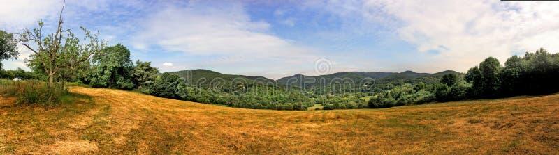 Panorama in de Elzas royalty-vrije stock afbeelding