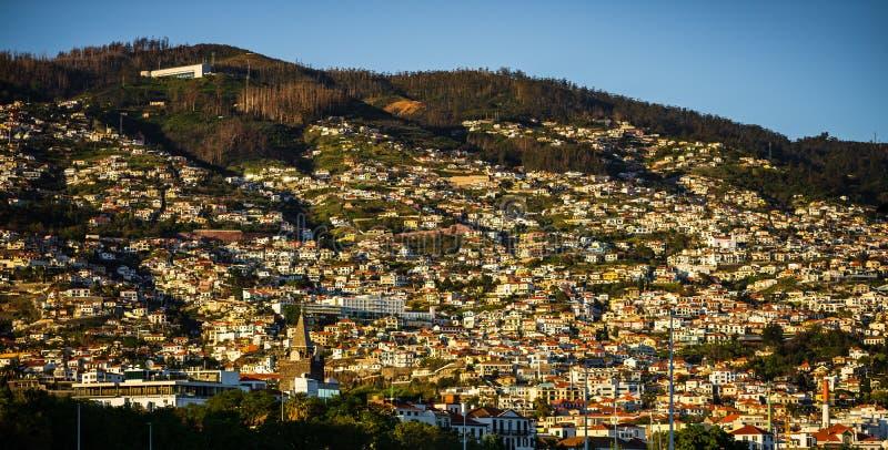 Panorama de Funchal sur l'île de la Madère, Portugal photo libre de droits