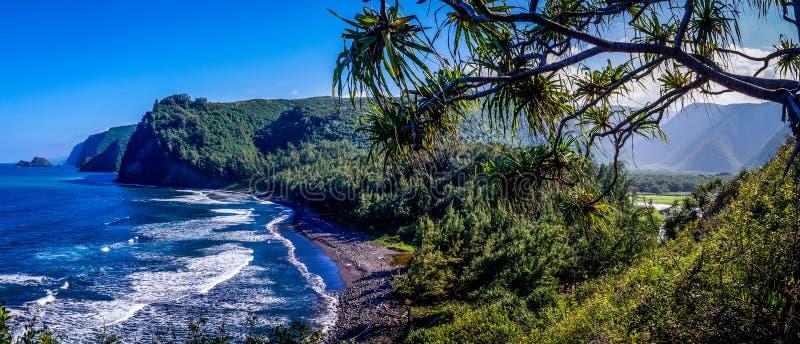 Panorama de Hawaii del valle de Pololu foto de archivo libre de regalías