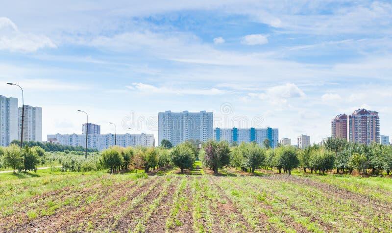 Panorama de jardin urbain photographie stock libre de droits