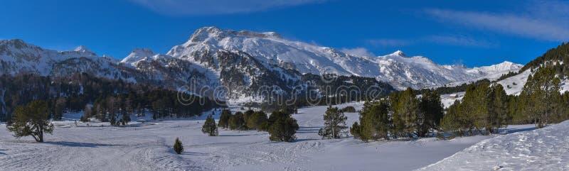 Panorama de la alta montaña en invierno con nieve, los árboles de pino y el cielo azul imagenes de archivo