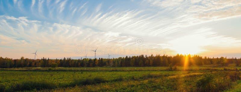 Panorama de la escena rural de PEI en la caída con los molinoes de viento imagen de archivo