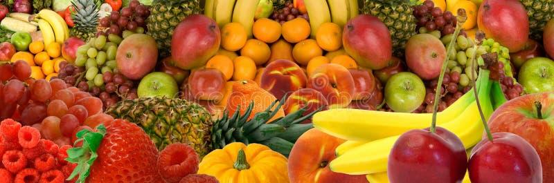 Panorama de la fruta imagen de archivo libre de regalías