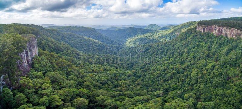 Panorama de la selva tropical y de acantilados rugosos foto de archivo libre de regalías