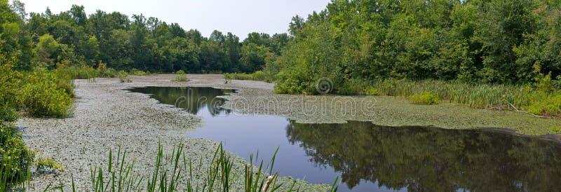 Panorama de lac photographie stock libre de droits