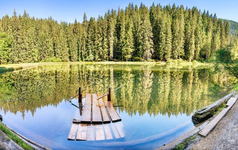 Panorama de lac de forêt dans la forêt image stock