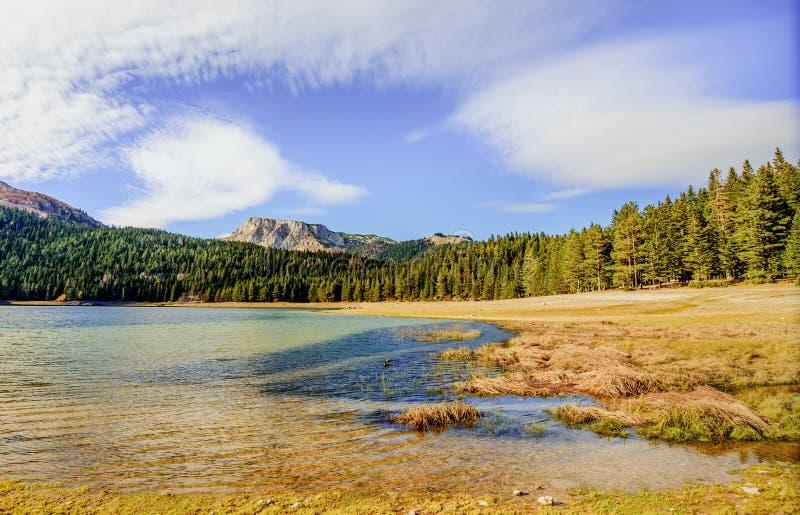 Panorama de lac noir (jezero de Crno), Durmitor, Monténégro image libre de droits