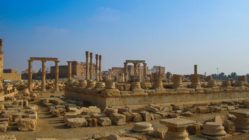 Panorama de las columnas del Palmyra, ciudad antigua destruida por ISIS Syria fotos de archivo