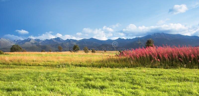 Panorama de las montañas imagen de archivo
