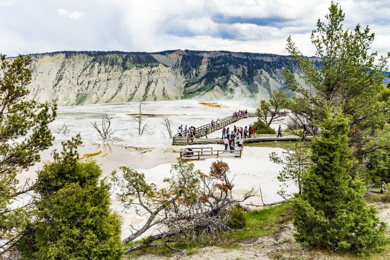 Panorama de Mamoth Hot Springs imagens de stock