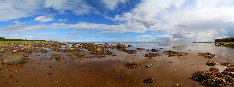 Panorama de mer blanche du nord photographie stock