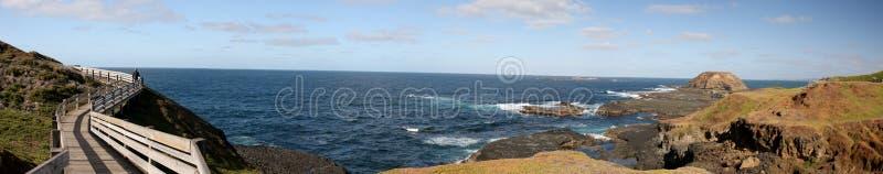 Panorama de Phillip Island Nature Park en el desfile del pingüino imagen de archivo libre de regalías