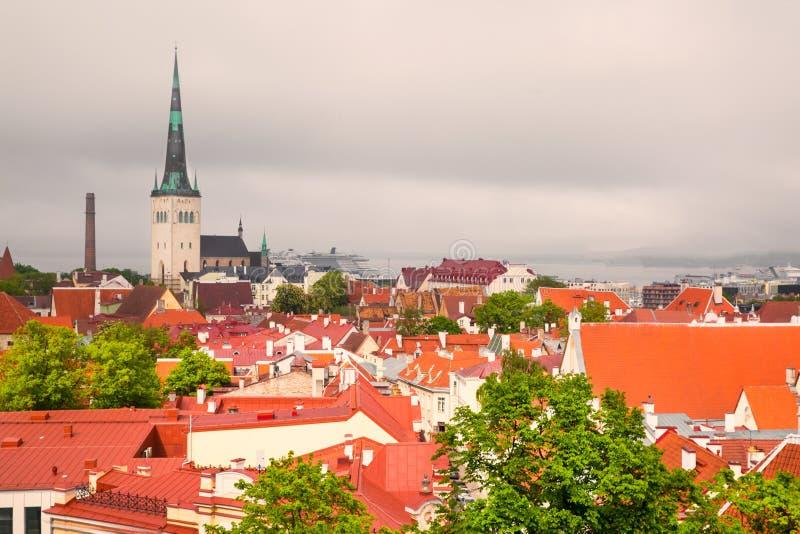 Panorama de Tallinn, Estonie Toits lumineux et ciel foncé image stock