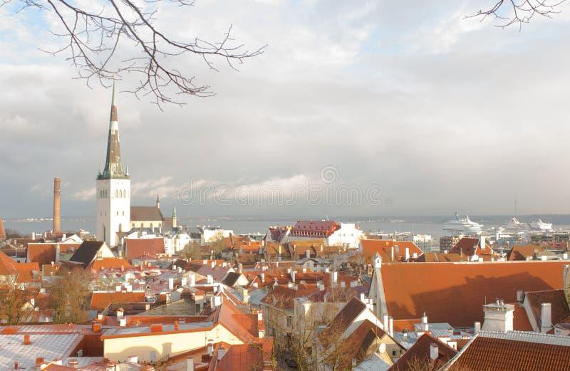 Panorama de Tallinn vieja La visión desde la tapa tallinn Estonia fotografía de archivo