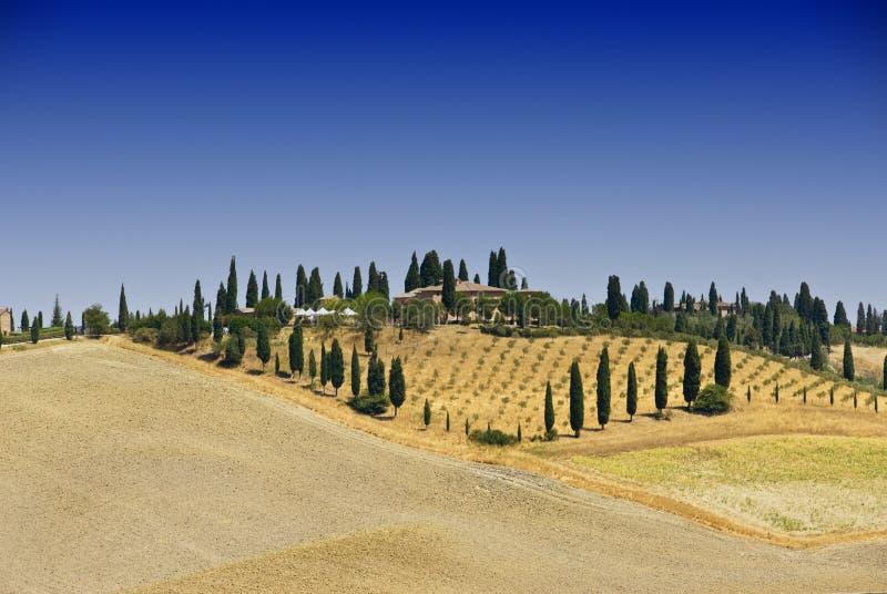 Panorama de Tuscan fotografia de stock