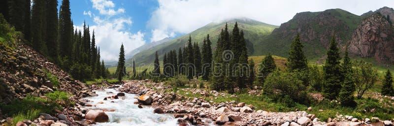 Panorama de um rio da montanha fotos de stock