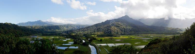 Panorama de vallée de Hanalei dans Kauai photographie stock libre de droits