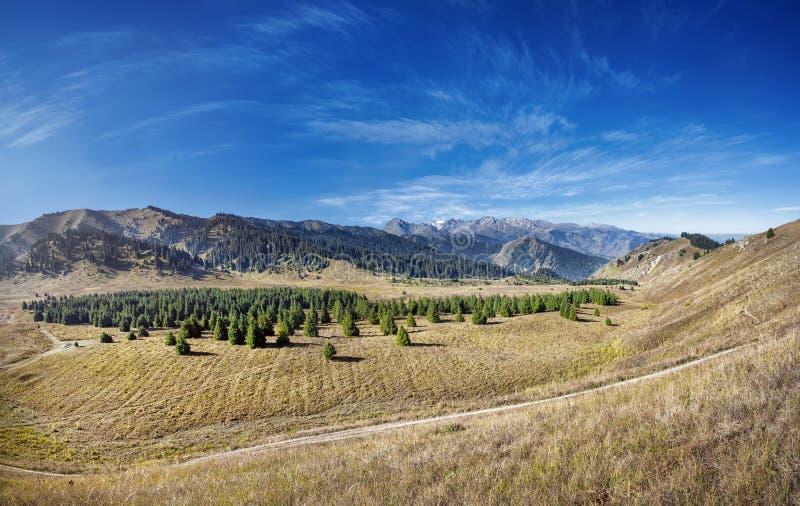Panorama de vallée de montagne image stock
