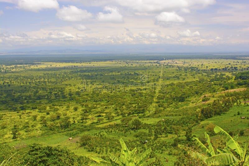 Panorama in de Vlaktes van Afrika royalty-vrije stock fotografie