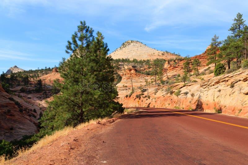 Download Panorama De Zion National Park Imagem de Stock - Imagem de rochas, parque: 107529205