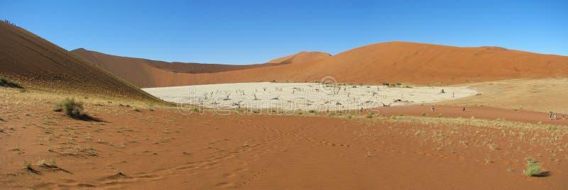 Panorama of Deadvlei, Sossusvlei royalty free stock photography