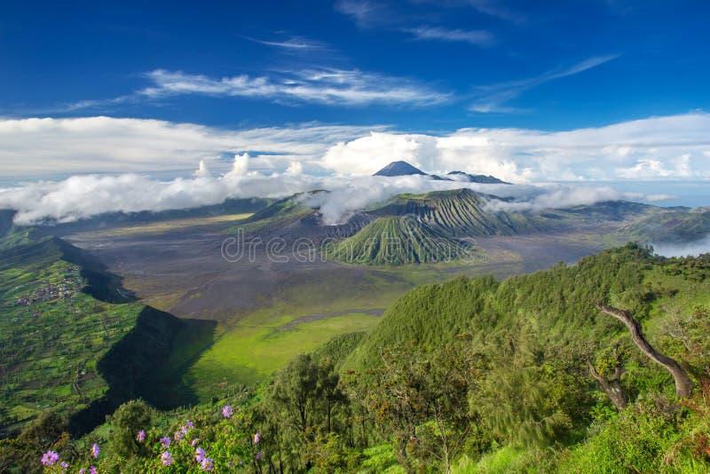 Panorama dei vulcani del supporto Bromo e di Batok immagini stock libere da diritti