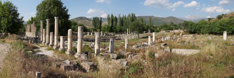 Panorama del ágora antiguo con las columnas de Dorian de Aphrodisias, imagen de archivo