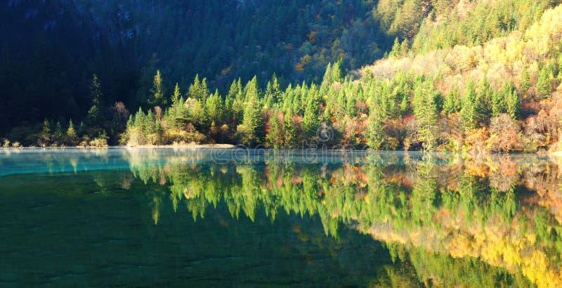 Panorama del árbol y del lago del otoño en Jiuzhaigou imagen de archivo libre de regalías