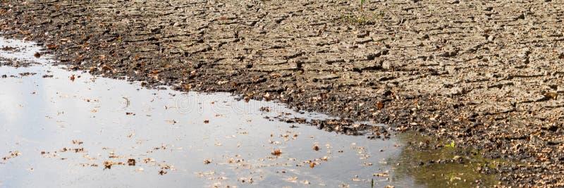 Panorama del agua de disminución y de la sequía en la charca fotos de archivo