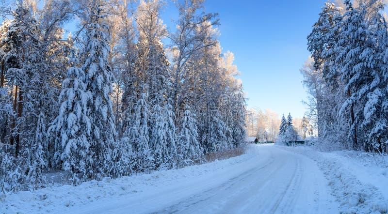 Panorama del bosque nevoso, con el camino llevando a la casa, Rusia, los Urales imagenes de archivo