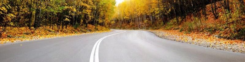 Panorama del camino del otoño fotografía de archivo libre de regalías