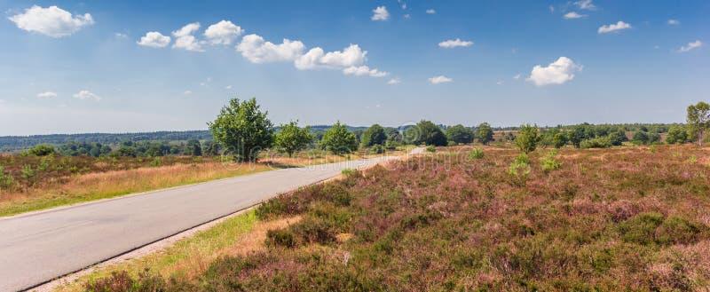 Panorama del camino que pasa la montaña de Holterberg en Holla foto de archivo