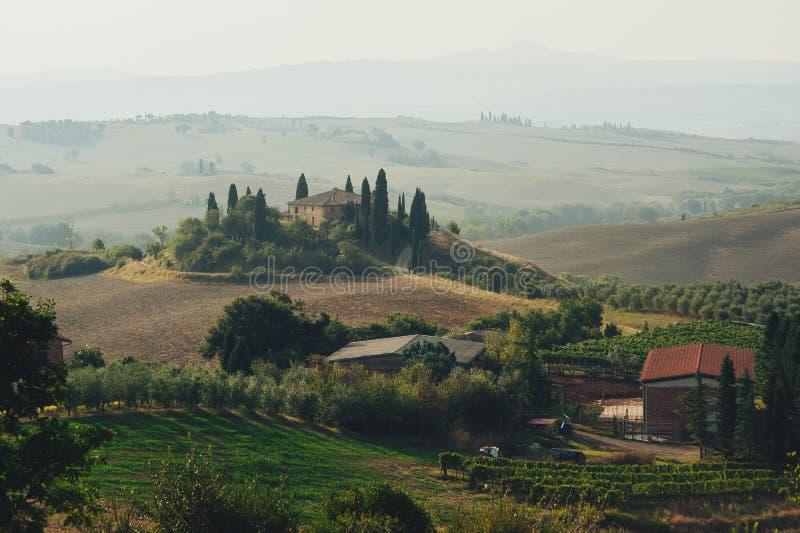 Panorama del campo de Toscana, Rolling Hills y campos verdes encendido fotos de archivo libres de regalías