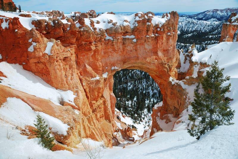Panorama del canyon di Bryce con neve fotografia stock