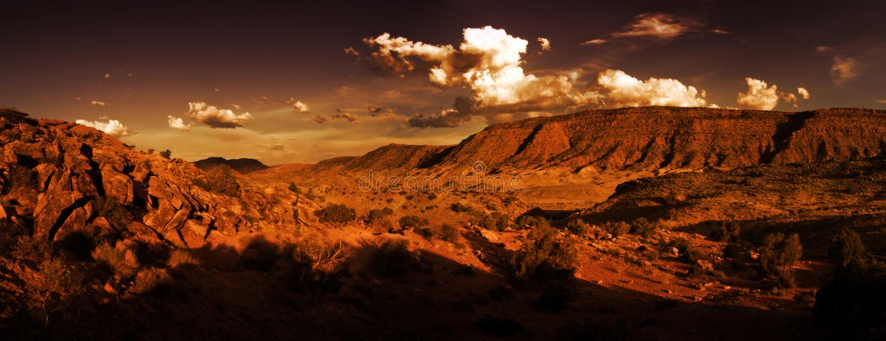 Panorama del deserto immagini stock libere da diritti
