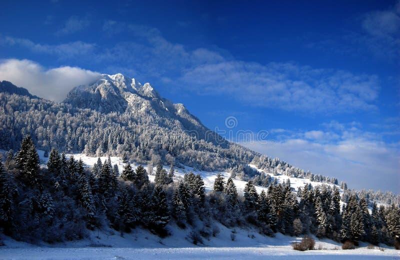 Panorama del invierno de la montaña imagen de archivo libre de regalías