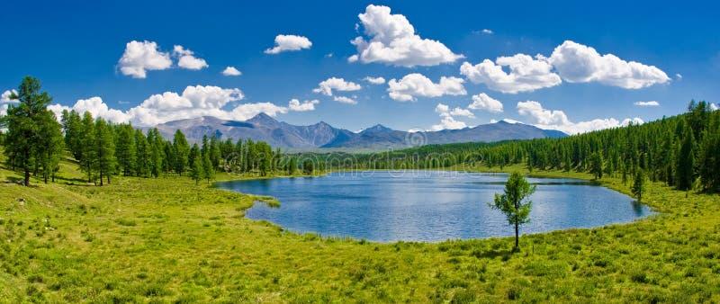 Panorama del lago della montagna, Altai, Russia fotografia stock libera da diritti