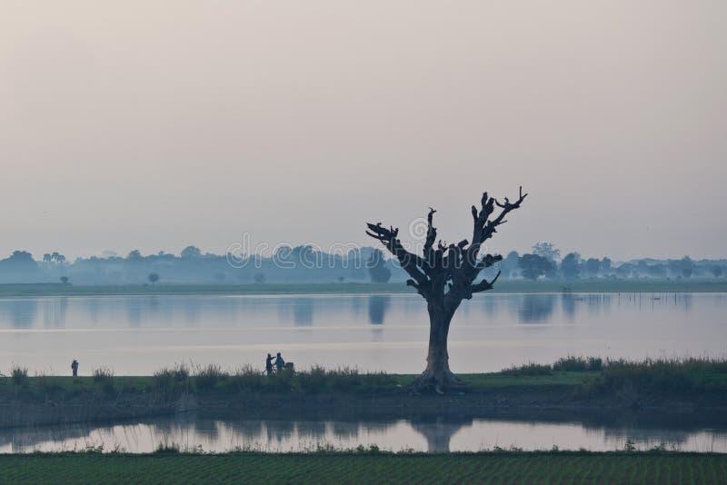Mañana en Amarapura, Myanmar imagenes de archivo