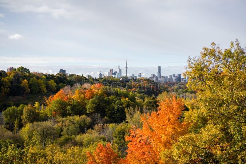 Panorama del otoño de Don Valley que mira hacia el centro de la ciudad de Toronto imágenes de archivo libres de regalías