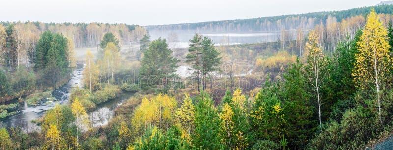 Panorama del otoño de la niebla del río del bosque de la mañana, foto de archivo libre de regalías