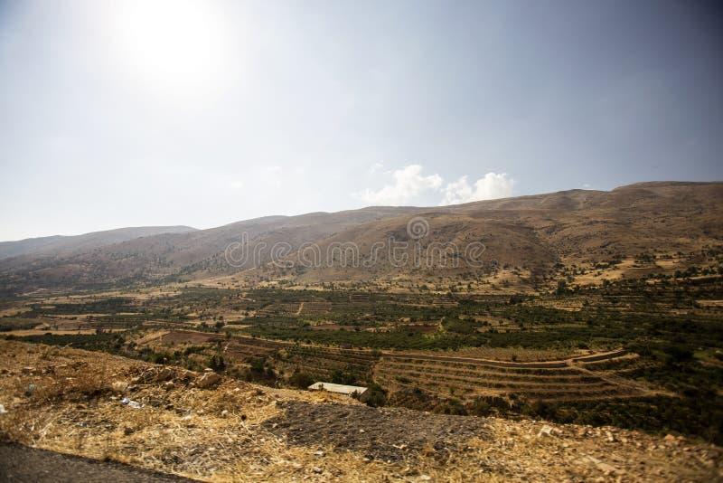 Panorama del paesaggio con le colline della vigna, Libano di Bekaa Valley immagine stock libera da diritti