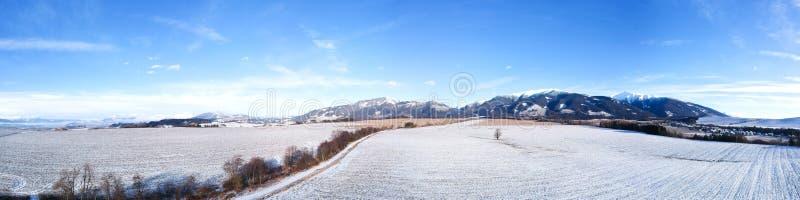 Panorama del paese di inverno immagine stock