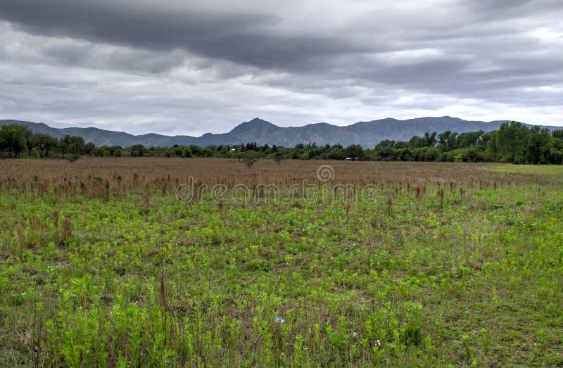 Panorama del paisaje de la montaña, belleza de la naturaleza fotografía de archivo