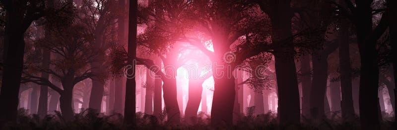 Panorama del paisaje otoñal. El humo en el bosque por la mañana. Selva tropical en la niebla imagen de archivo