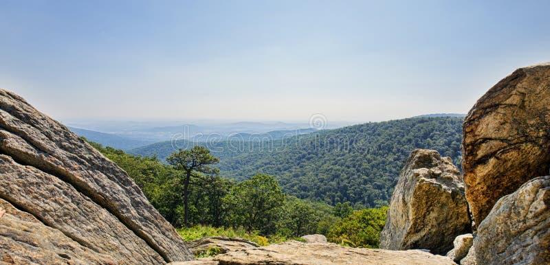 Panorama del parco nazionale di Shenandoah fotografia stock