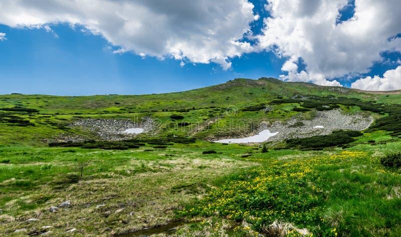 Panorama del pico de montaña en Cárpatos imagenes de archivo