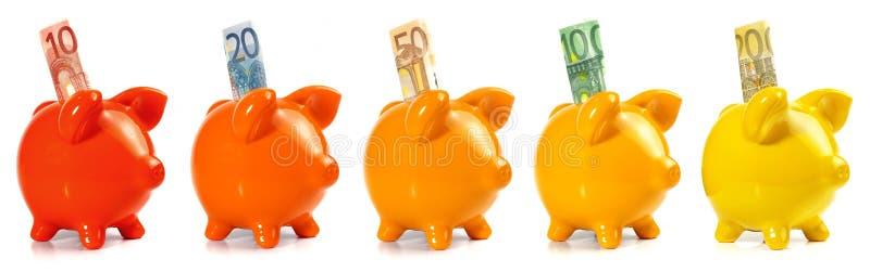 Panorama del porcellino salvadanaio con EURO Bankontes immagini stock