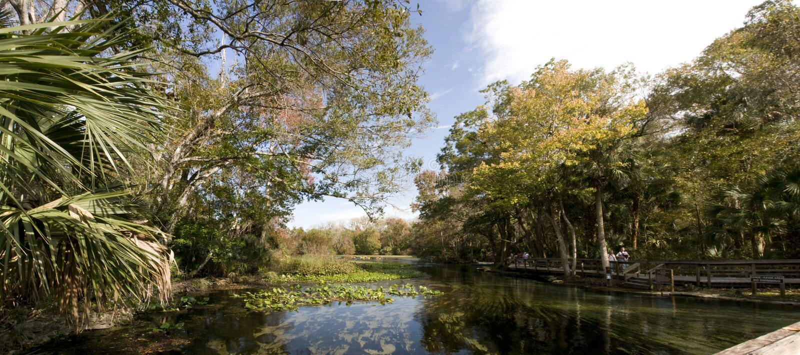 Download Panorama Del Resorte Natural En La Florida Foto de archivo - Imagen de florida, parque: 7275092