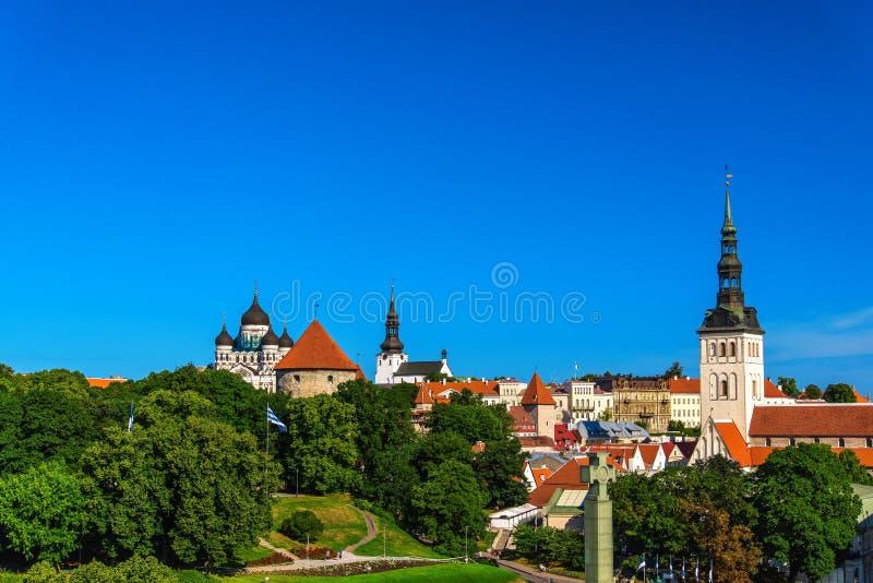 Panorama del verano de la ciudad vieja en Tallinn, Estonia fotos de archivo libres de regalías