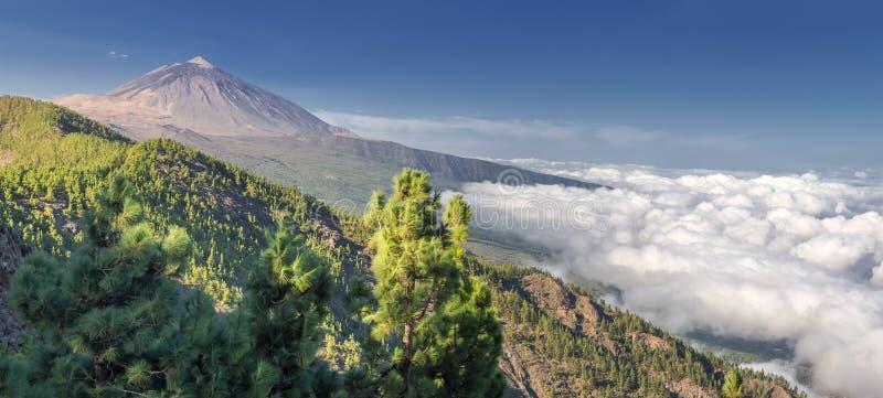 Panorama del volcán Teide y del valle Tenerife de Orotava fotos de archivo libres de regalías
